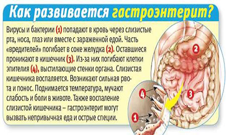 Лечение гриппа у детейЛечение ребенка - детские болезни, консультации, опыт. Лечение ребенка - детские болезни, консультации, оп